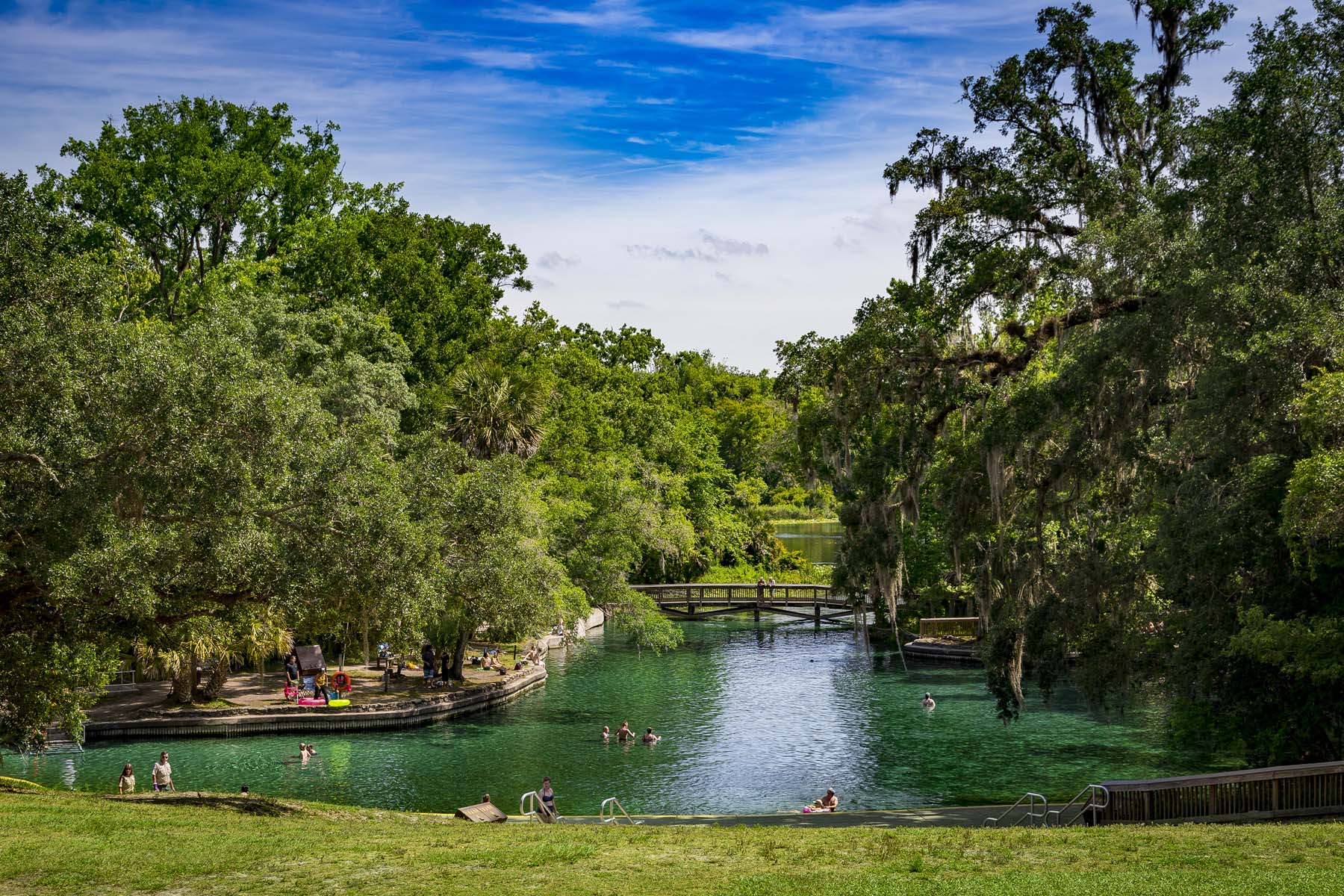 The Wekiva Springs