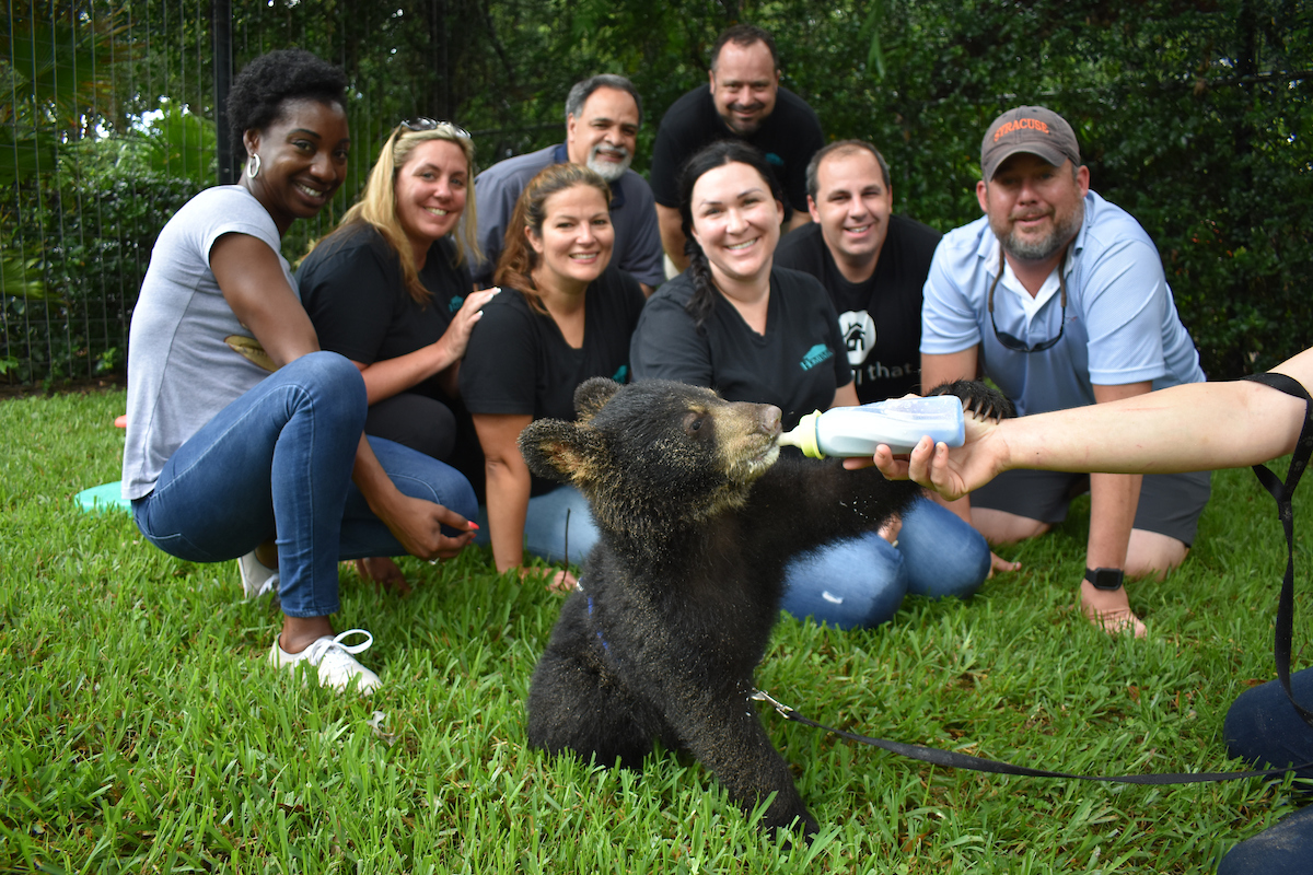 erica diaz team outing wild things bear cub