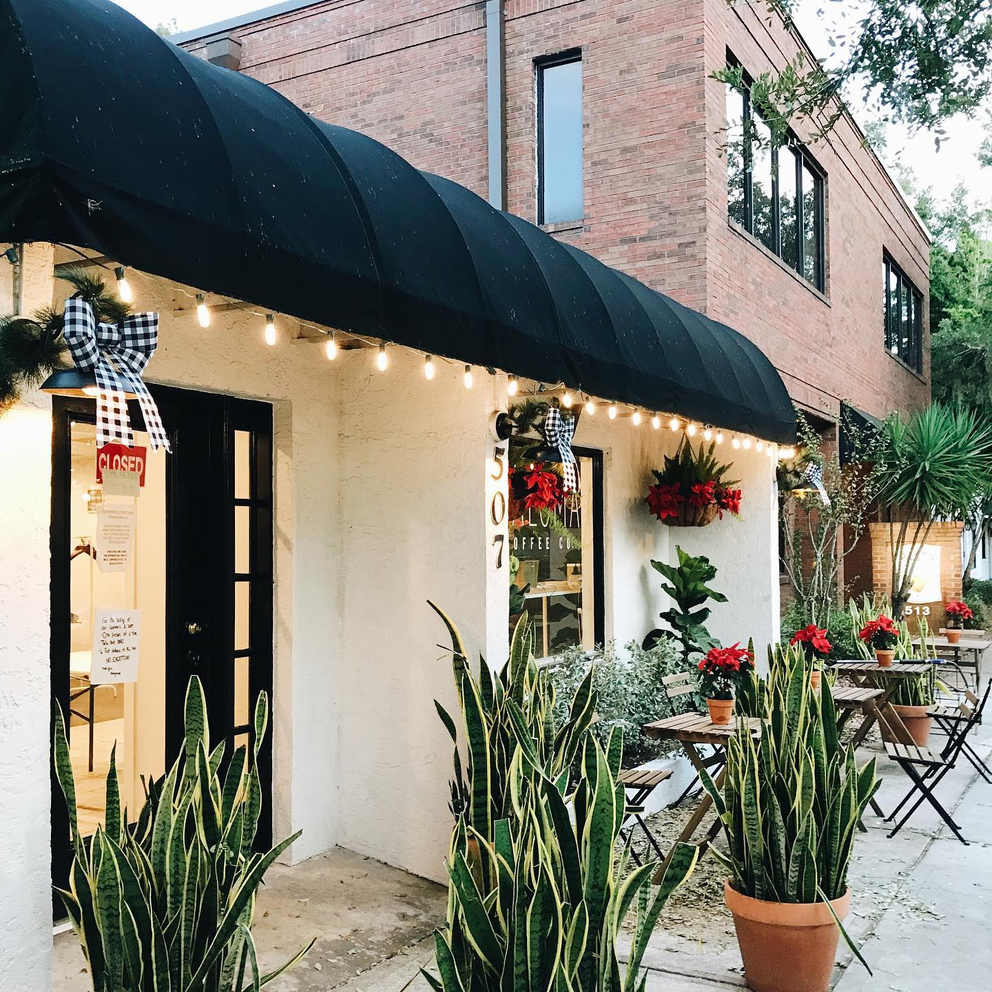paloma coffee co downtown windermere